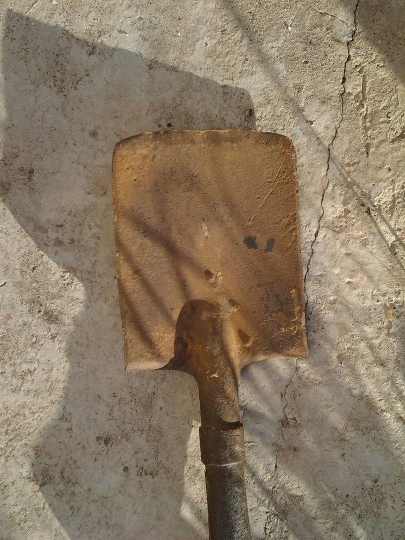 Продам лопатку РИА E37b2775