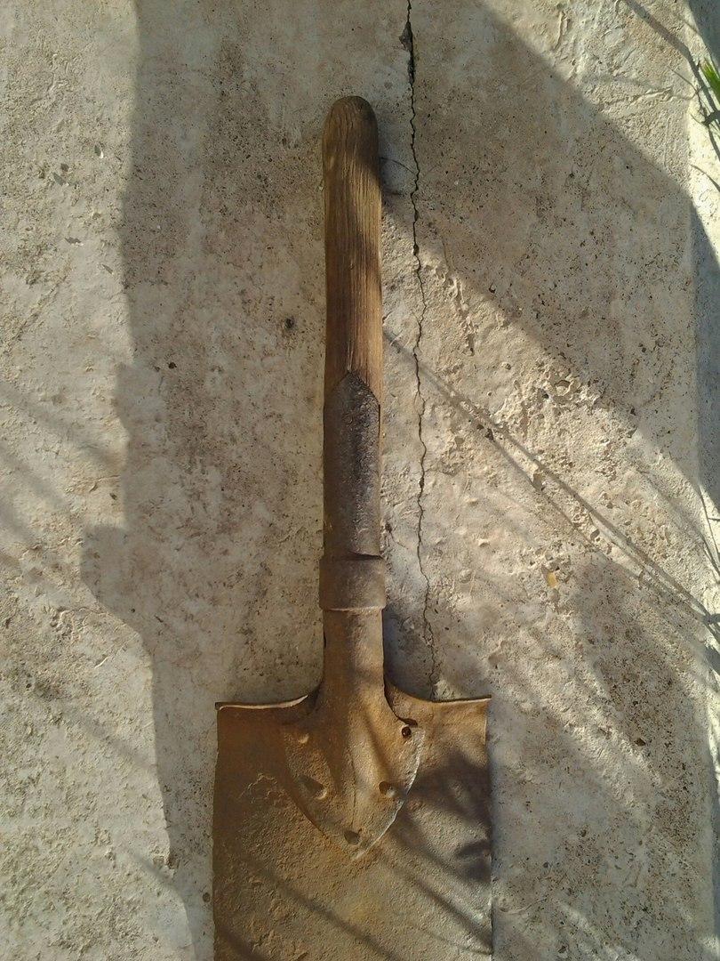Продам лопатку РИА C37b2775