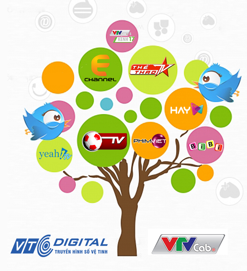 VTC phát gói kênh của VTVcab - Page 2 Kenh%20VTV%20cab