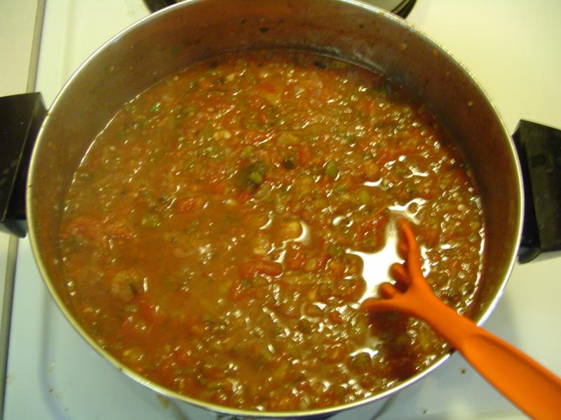 Building the garden and first year results. Salsa05small