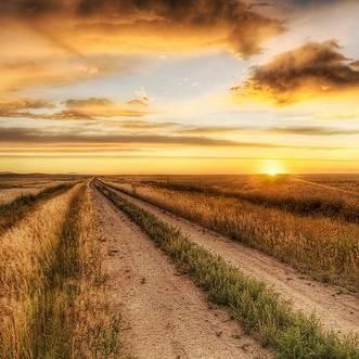 Busca la inspiración dentro de ti Camino-largo