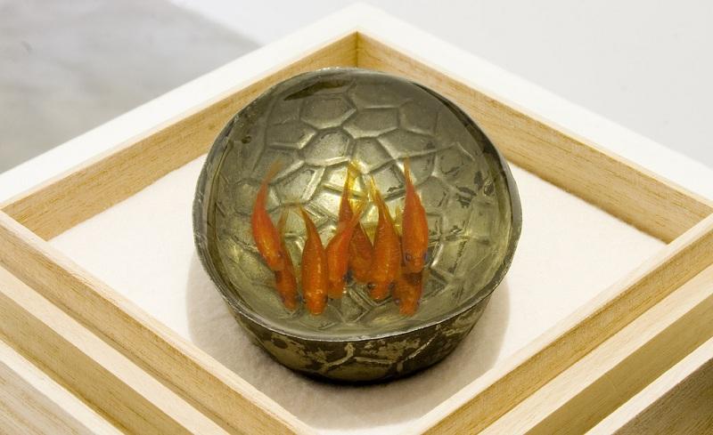 நம்பமுடியாத 3 டி ஓவியங்கள்  3d-fish-sculpture-paintings-layer-by-layer-riusuke-fukahori-10