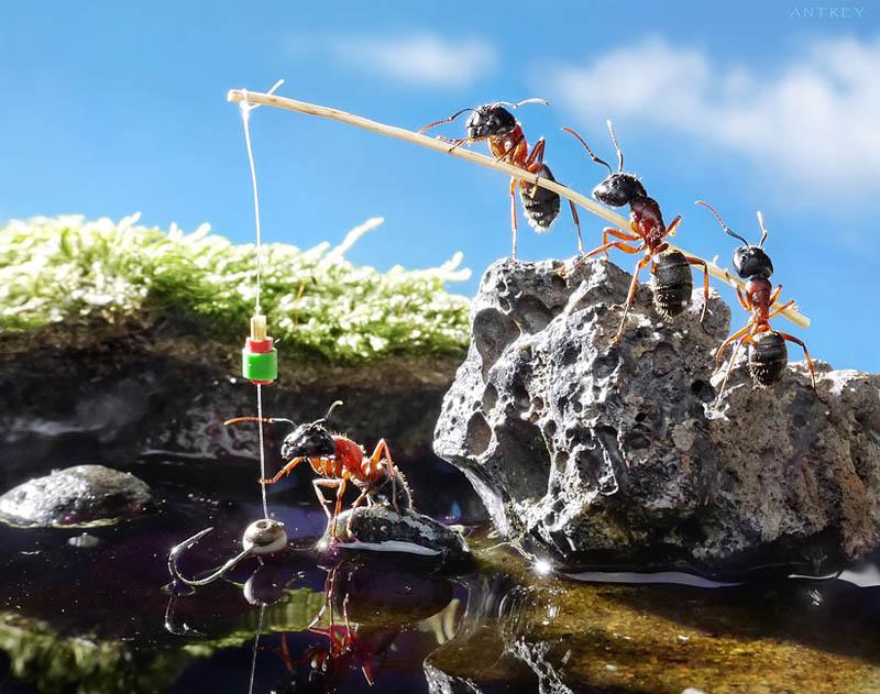 எறும்புகளின் அழகிய காட்சிகள்!! Real-ants-in-fantasy-settings-landscapes-andrey-pavlov-12