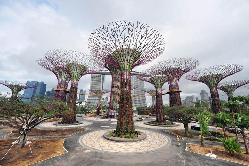 அழகிய சிங்கப்பூரில் அழகிய மரங்கள்  Gardens-by-the-bay-supertrees-singapore-1