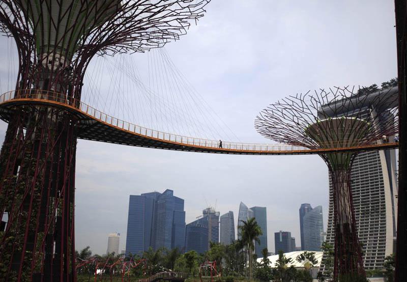 அழகிய சிங்கப்பூரில் அழகிய மரங்கள்  Gardens-by-the-bay-supertrees-singapore-10