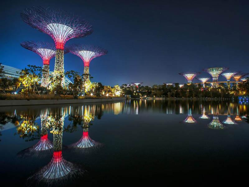 அழகிய சிங்கப்பூரில் அழகிய மரங்கள்  Gardens-by-the-bay-supertrees-singapore-5