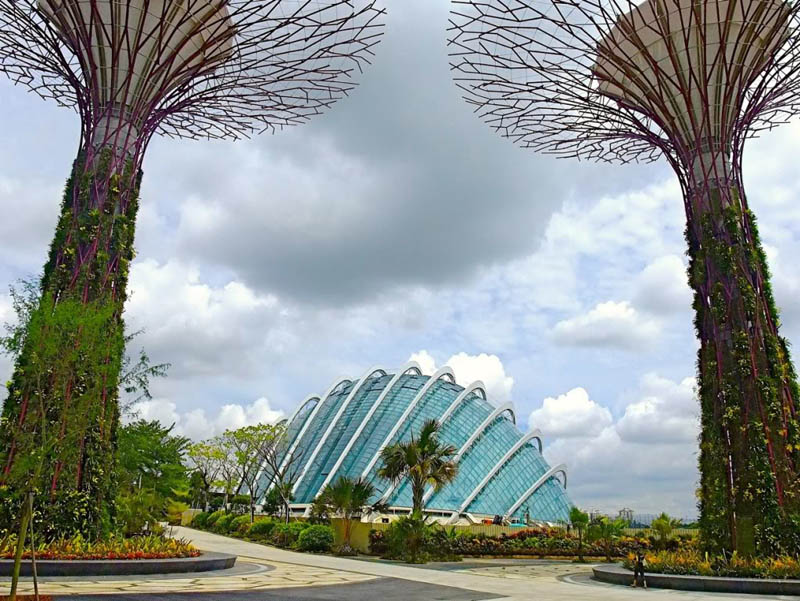 அழகிய சிங்கப்பூரில் அழகிய மரங்கள்  Gardens-by-the-bay-supertrees-singapore-6