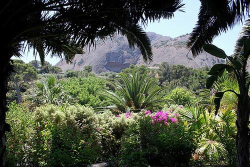 (13) Le Parc du Mugel et son jardin exotique - La Ciotat 10997954.df433b44.500