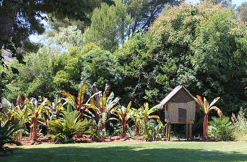 (13) Le Parc du Mugel et son jardin exotique - La Ciotat 10998805.237cfb04.500