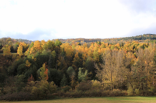 couleurs d'automne en Velay 11660697.3edc4096.500