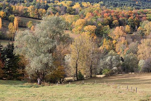 couleurs d'automne en Velay 11660700.9cefa1c6.500