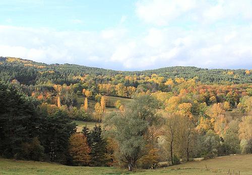 couleurs d'automne en Velay 11660703.5b1801ff.500