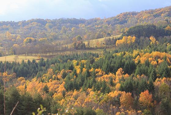 couleurs d'automne en Velay 11660705.a540357c.560