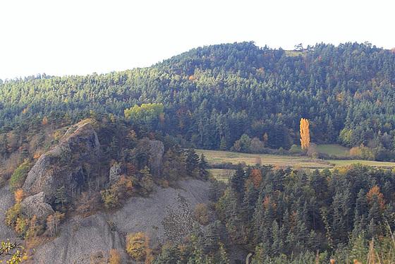 couleurs d'automne en Velay 11660739.78726243.560