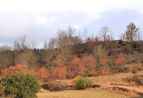 couleurs d'automne en Velay 11660743.914b5d6f.500