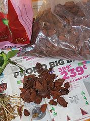 Rempotage de boutures de Dendrobium - Ecorces de pin