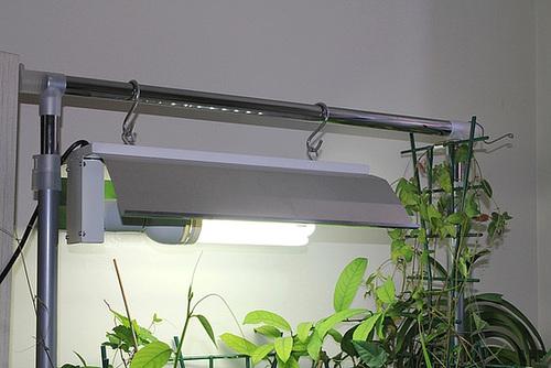 Ampoule ECO CFL - Envirolite MG -Croissancee- avec réflecteur-douille