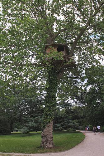 Cabane dans les arbres de Tadashi Kawamata (3)