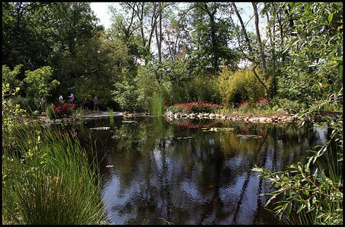 (41) Les Prés de Goualoup - extension du Parc de Chaumont-sur-Loire 33146887.c283676f.500