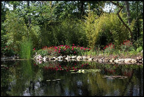 (41) Les Prés de Goualoup - extension du Parc de Chaumont-sur-Loire 33146915.8e40804e.500
