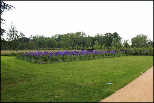 (41) Les Prés de Goualoup - extension du Parc de Chaumont-sur-Loire 33139819.211d1351.500
