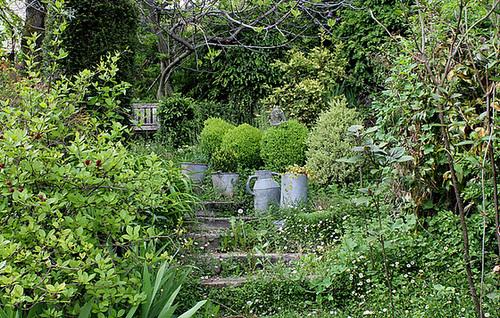 Escalier champêtre