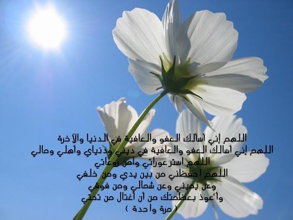 صباح الخير  - صفحة 3 08100517503258