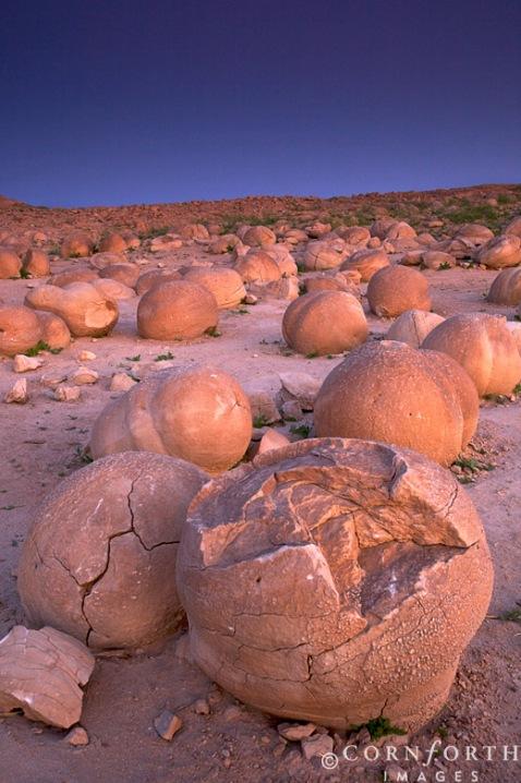 Самые интересные места на планете 33-Pumpkin%20Patch