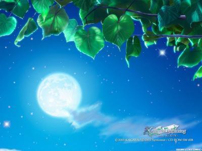 Feuilles volantes Ciel-lune1