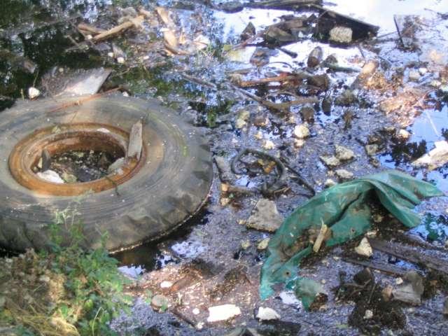 ماجستيرتبحث في موضوع حماية البيئة ودور هيئات الضبط الإداري المختصة في توفير سبل الحماية 1_31586_1367