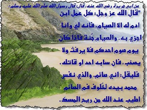 انوار رمضان1437هـ  1373694133711