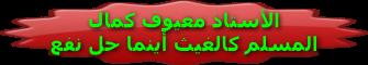 قرص اللغة العربية رابعة متوسط 87438