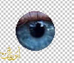 ((درس)) تغيير لون العيون بالفوتوشوب ((جديد)) 35490