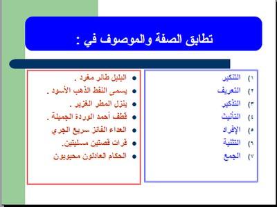 الاحتفال العالمى باللغة العربية اليوم السبت 18  ديسمبر // كل سنة وانتم طيبين 46099