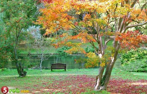 اجمل  حدائق في العالم بالصور 3041955160_e8c4abca12_b