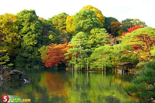 اجمل  حدائق في العالم بالصور 3079127033_c05b6510e2_b