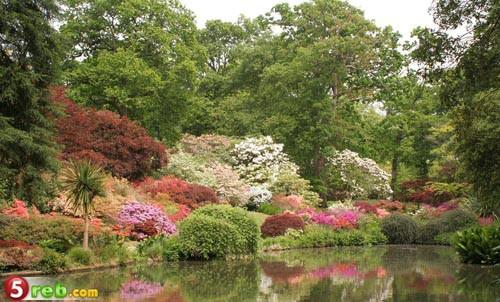 اجمل  حدائق في العالم بالصور 663857821_4e046108a4_b