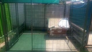 Projekt Zalaapati 22442289ll