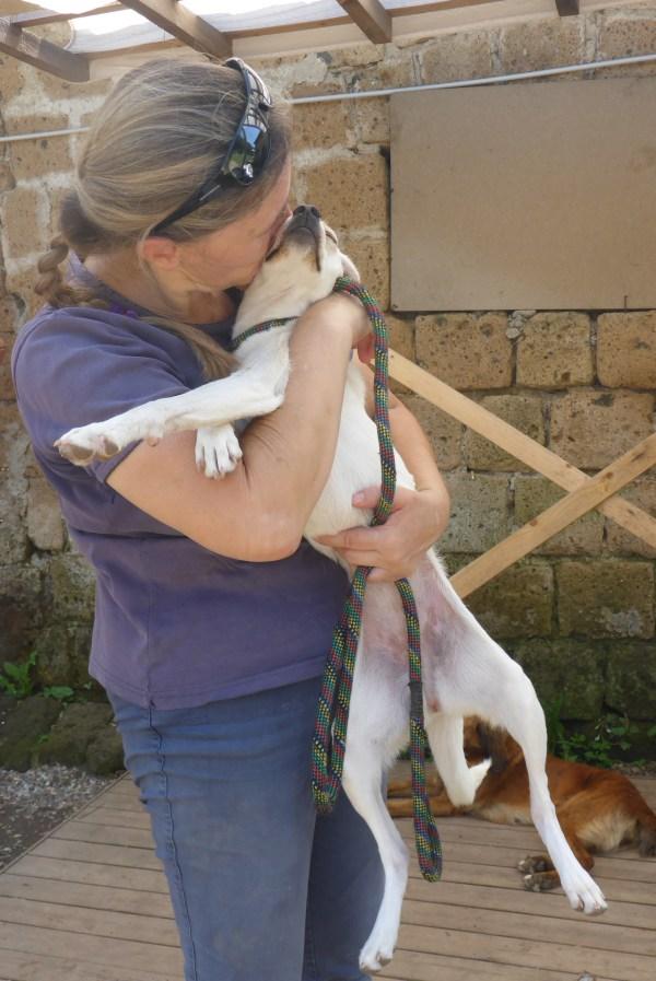 Bildertagebuch -  Amber: ganz reizende, kleine zierliche Maus sucht....hat ein ZUHAUSE IN ITALIEN gefunden! 26611172vg