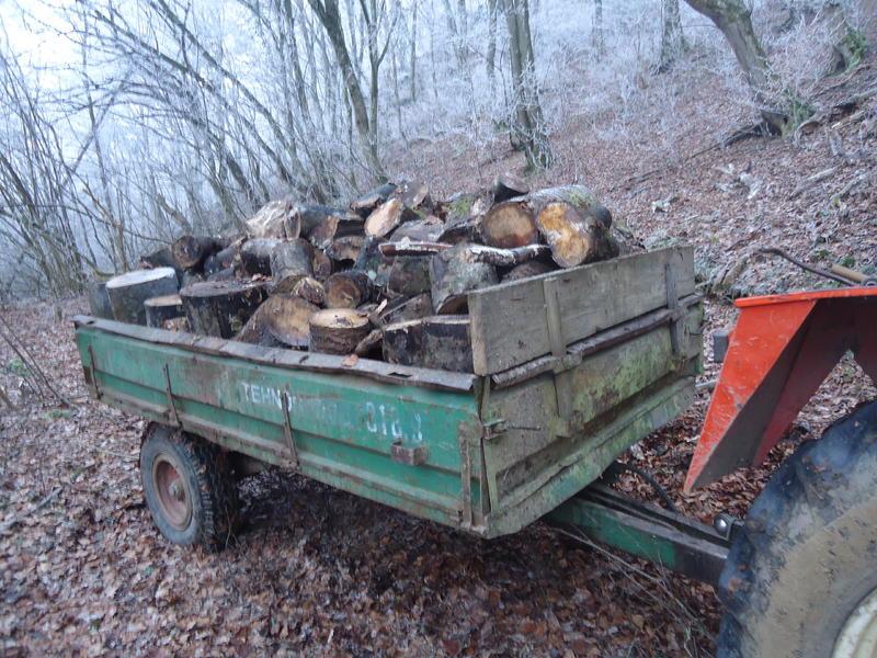 Izrada ogrijevnog drva - Page 20 27662843nm