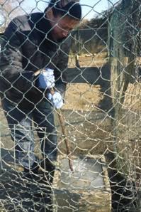 Heftiger Wintereinbruch in Italien – und auch die Hunde müssen frieren…  - NOTFELLE DOG VILLAGE (ITALIEN) 28102907nd