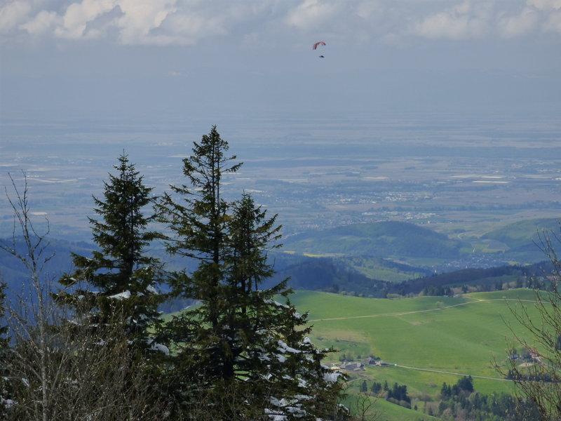 Besuch bei der Schwarzwaldmodellbahn Hausach 29148524qm