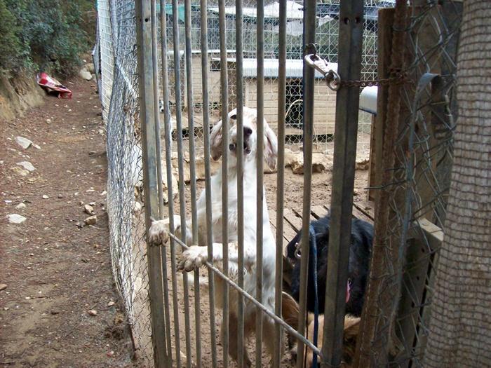 Reisebericht September 2009 von Inge 2991416
