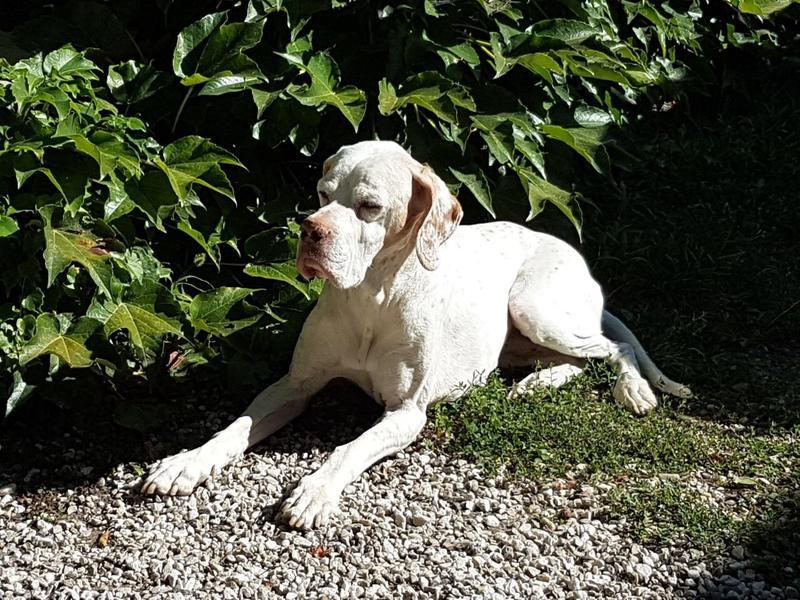 Helga - die Neue aus Süditalien - Seite 2 30299538wx