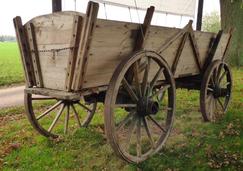 Nur ein Ackerwagen 30673283ly
