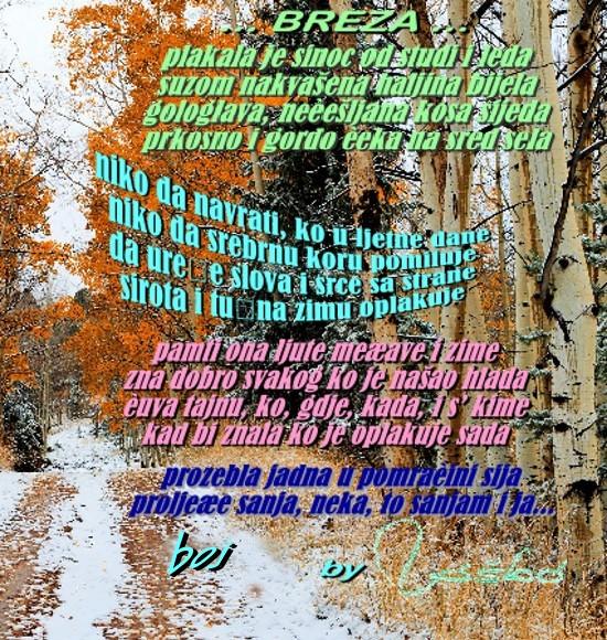 IZ  MOG  PERA - Page 5 31199432tx
