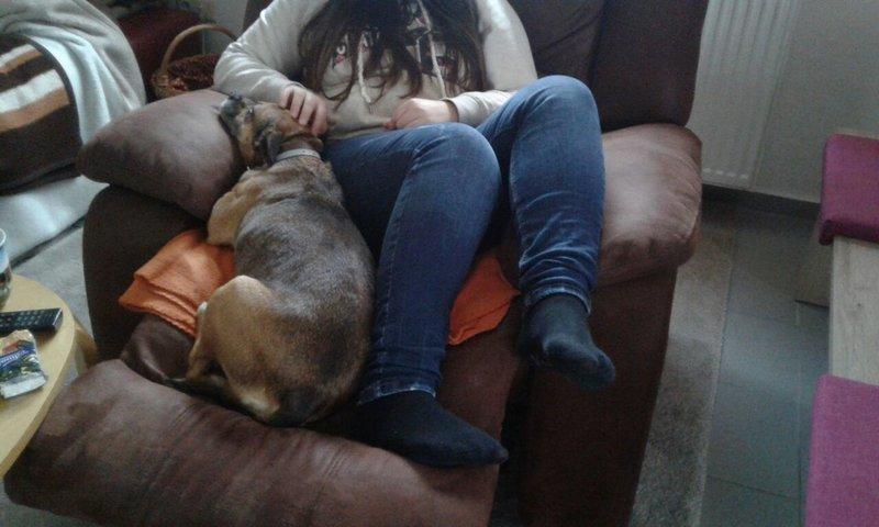Bildertagebuch -  Ivy (jetzt Maja): eine kleine Hundelady hofft - VERMITTELT! 31696826nr