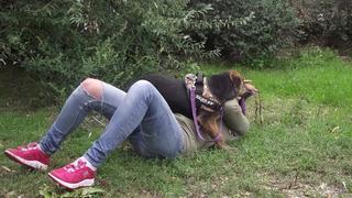 Katica, Schäferhund-Windhund-Mischlingshündin, geb. ca. Mai 2017 31901175ad