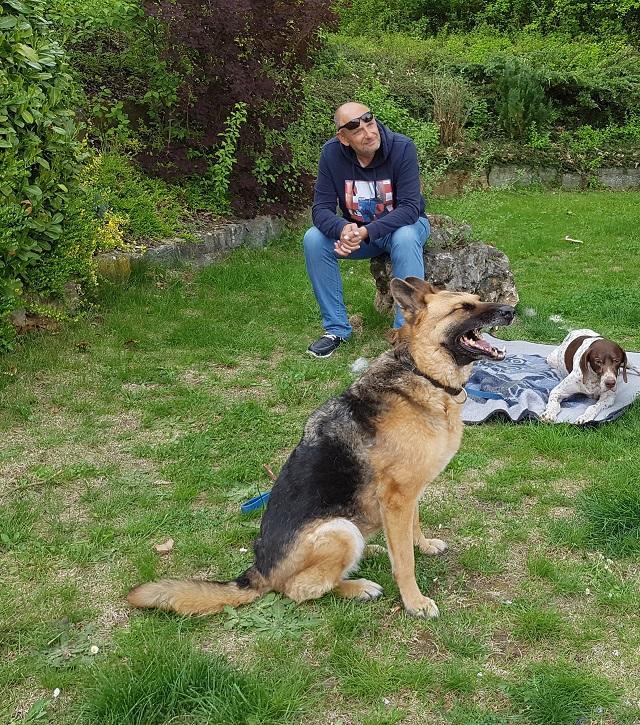 Bildertagebuch - Lissa darf in ihrer Pflegestelle bleiben  32654250ie