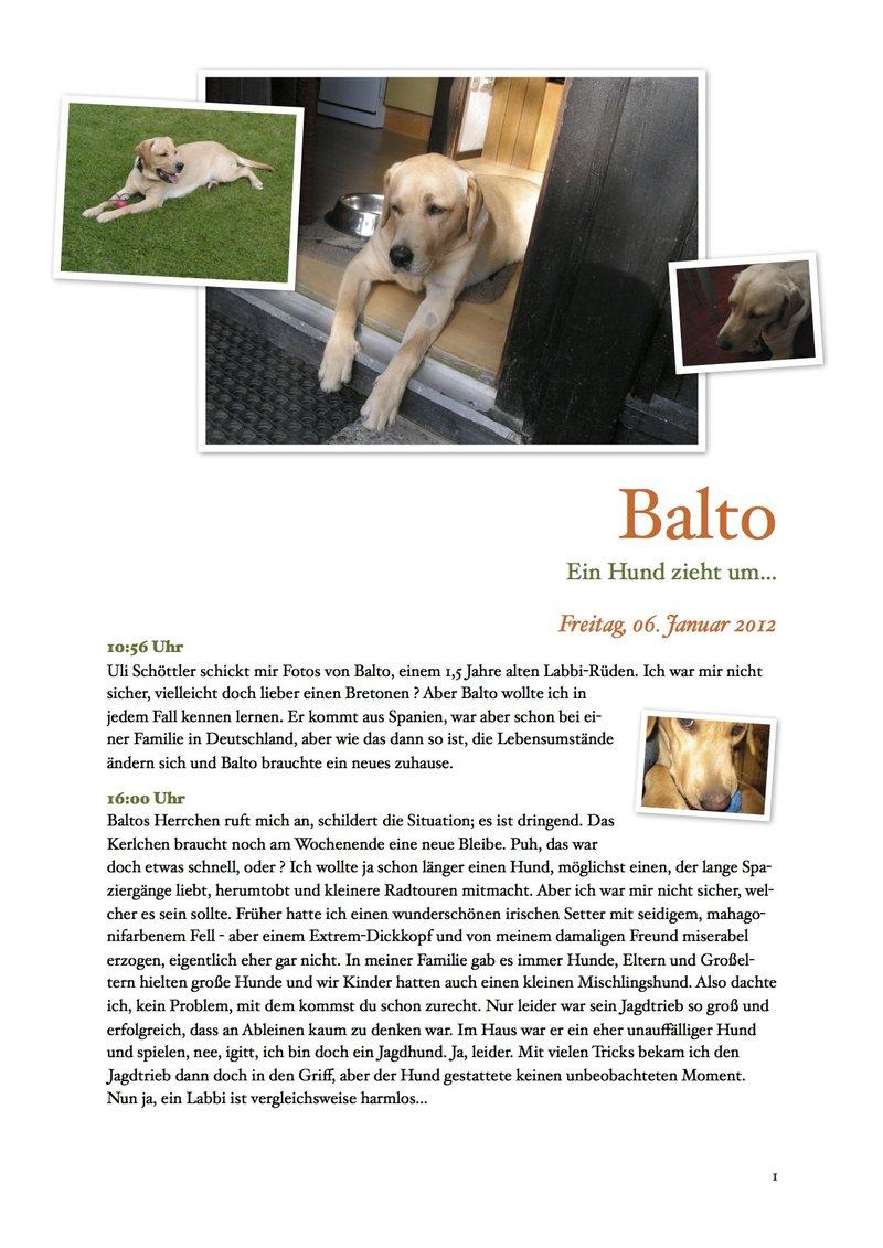 Balto: Ein Labbi zieht um... 9346225bqe